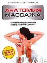 Анатомия массажа (303339)