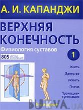Верхняя конечность. Физиология суставов (261956)
